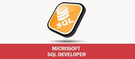 MICROSOFT SQL DEVELOPER